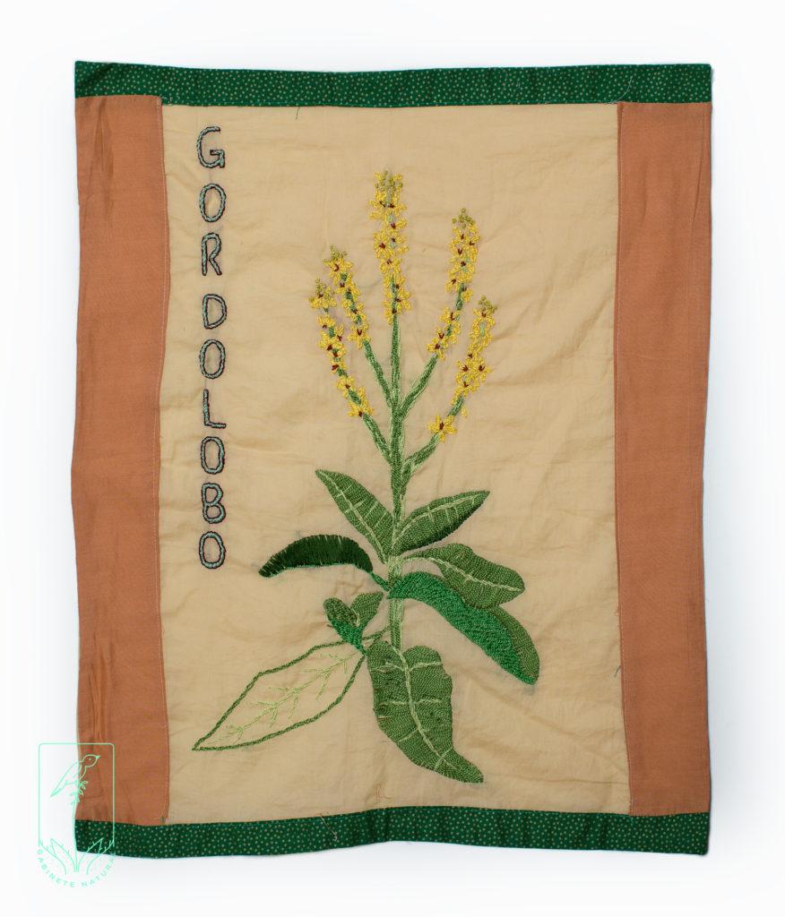 Flor de Gordolobo, contra alergias respiratorias y congestiones bronquiales.