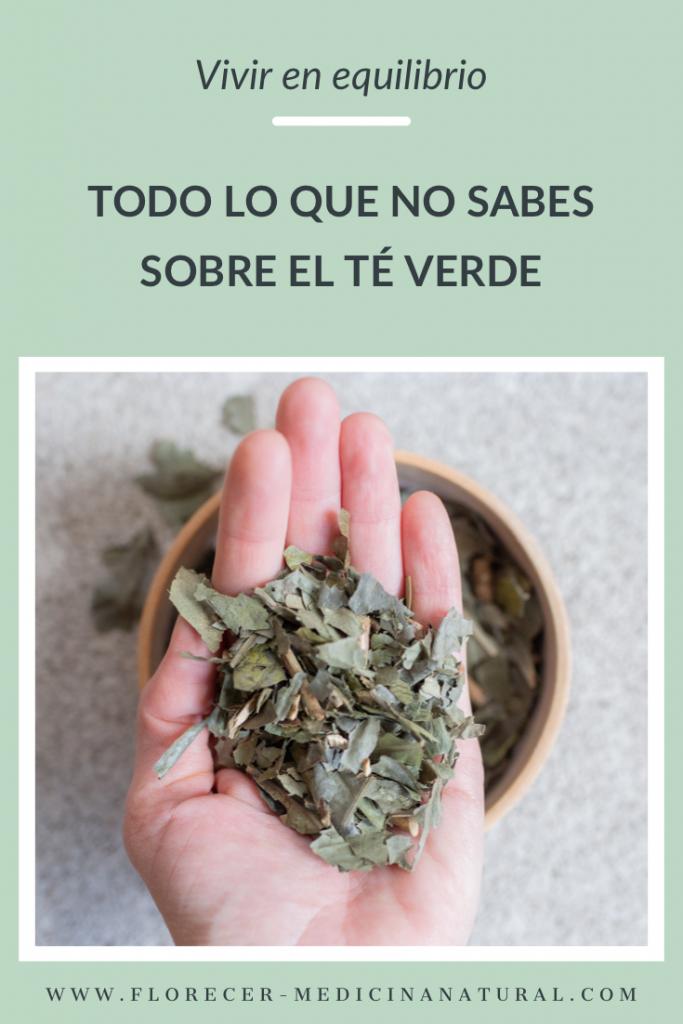 Todo Lo Que No Sabes Sobre El Té Verde