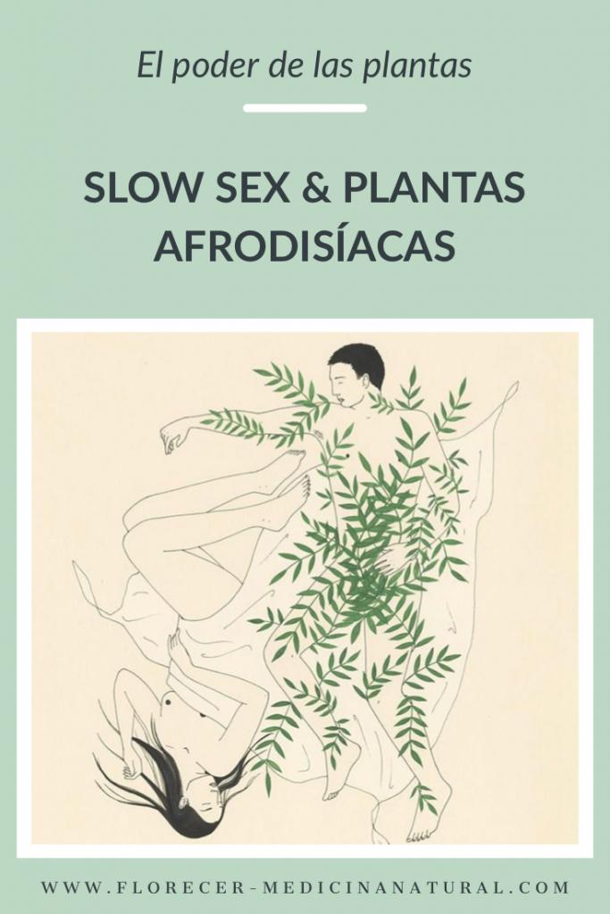 Slow Sex Y Plantas Afrodisíacas