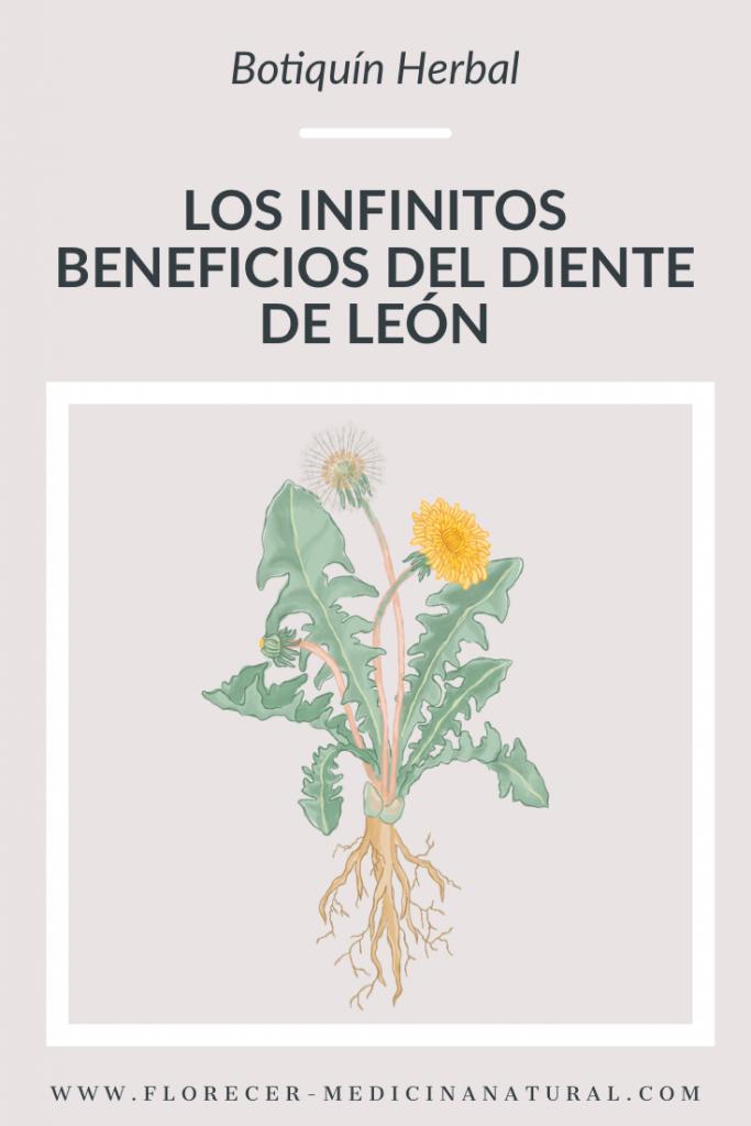 Los infinitos beneficios del Diente de león