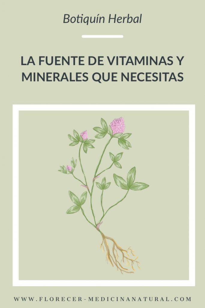 La fuente de vitaminas y minerales que necesitas