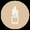 detox-plantas-icon